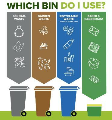 What goes in each bin?